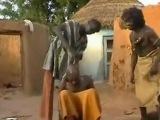 Лечение головной боли по-африкански